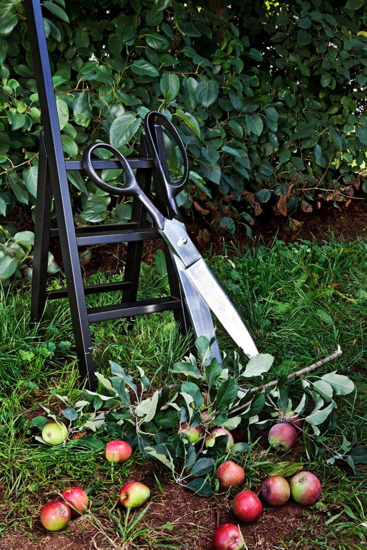 est1 StyleNomad ©DoswellMcLean orchard scissors