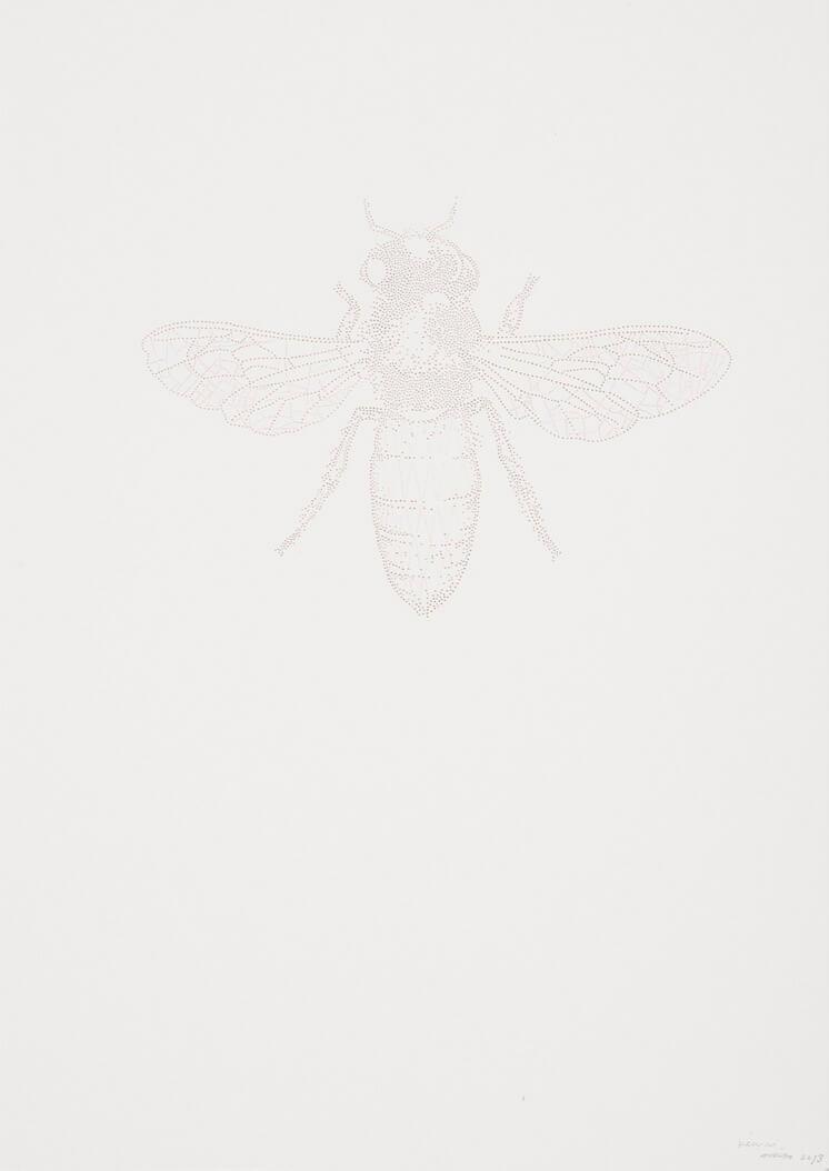 Miso Bee pin pricks on paper Est Magazine