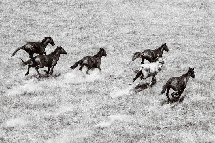 Nick Leary Photography Running Freeb Est Magazine