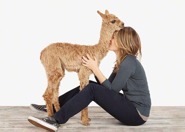 Animal Print Shop 12 © Sharon Montrose Est Magazine