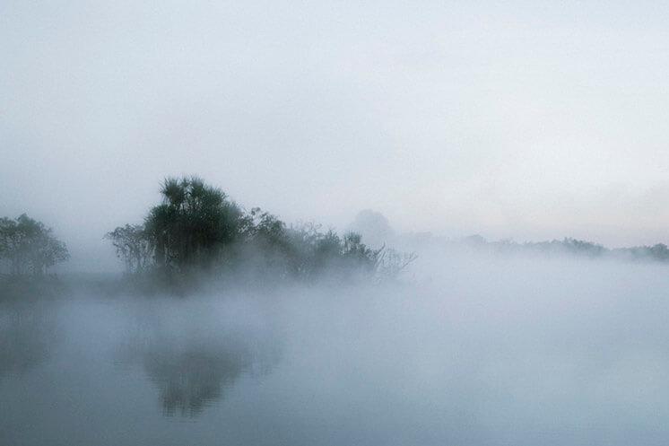 Mist Lake © Felix Forest Est Magazine