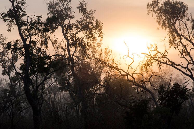 Sunset © Felix Forest Est Magazine
