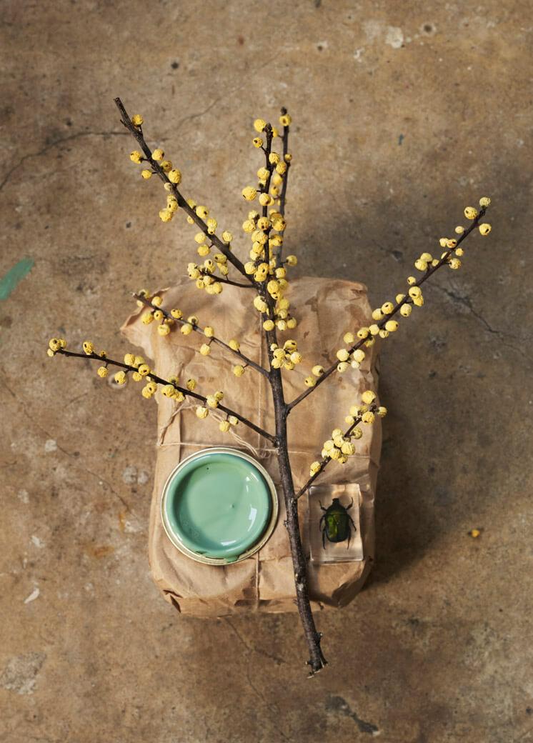 Going Green Trend Report STYLING Anouk B PHOTO © Marjon Hoogervorst Est Magazine Issue 8