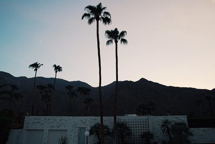 Est Magazine Palm Springs These Foregin Lands6