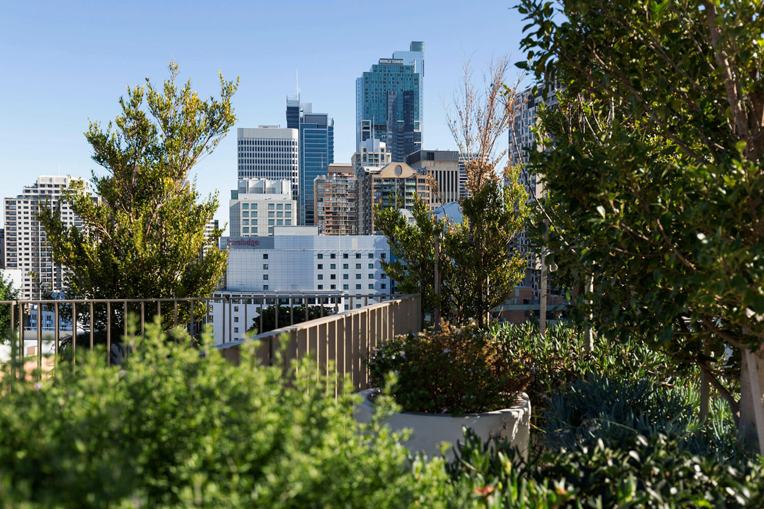 est living open house surry hills roof top apartment bresic whitney.21