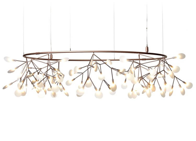 Heracleum The Big O | Space