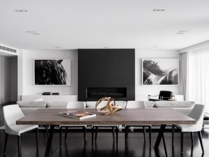Monochrome House