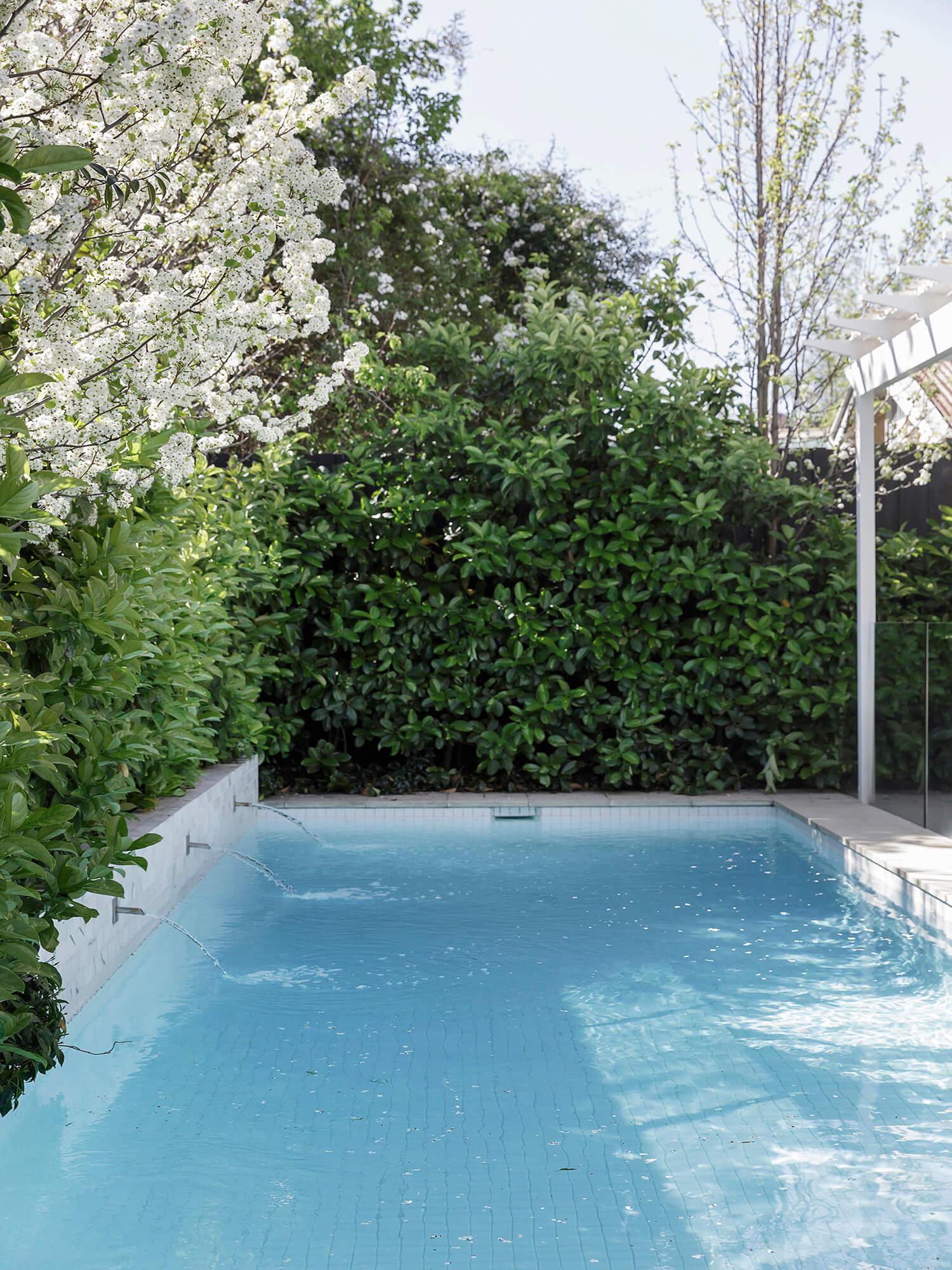 est living open house 180 Union Rd Surrey Hills 12
