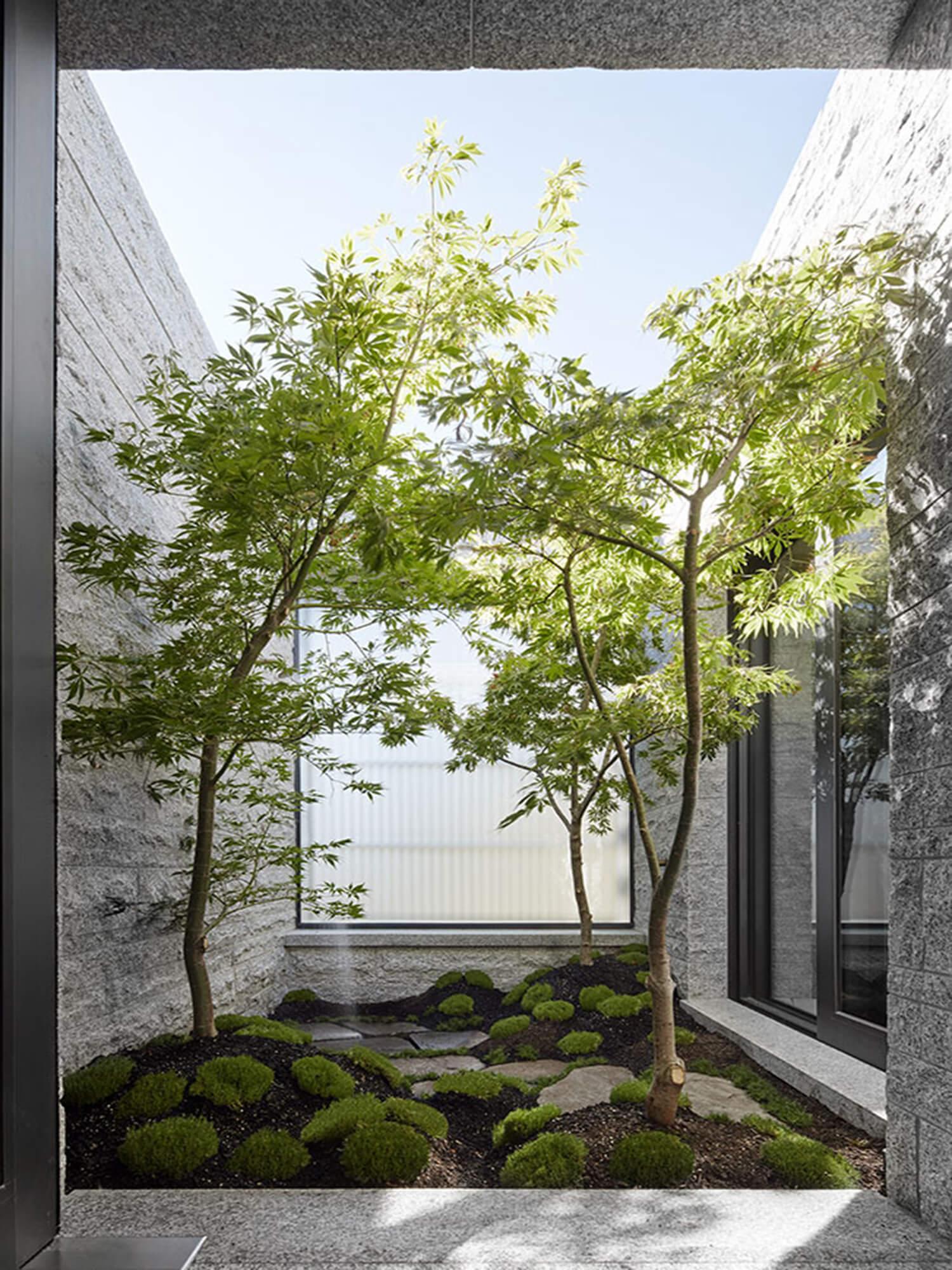 est living  interiors b.e architecture Armadale image 02
