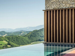 Pools & Pool Pavilions | AP House Pool by Gardini Gibertini Architects
