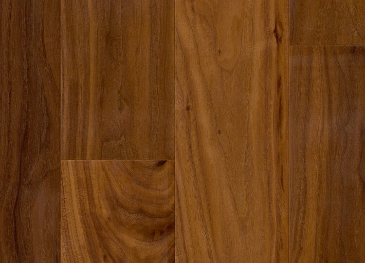 American Walnut Admonter