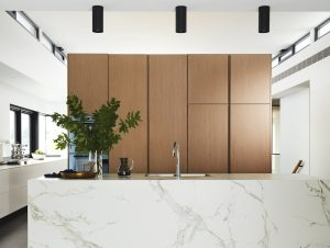 Equipped for Family Living | Dekton House by Alec Pappas Architects