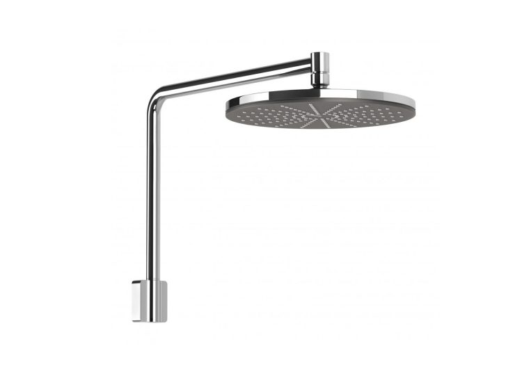 NX Vive Shower Arm & Rose
