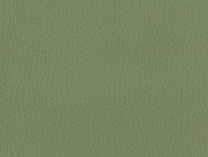 La Casa Leather – Sage