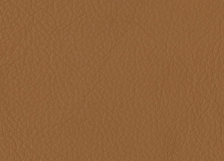 La Casa Leather – Bison