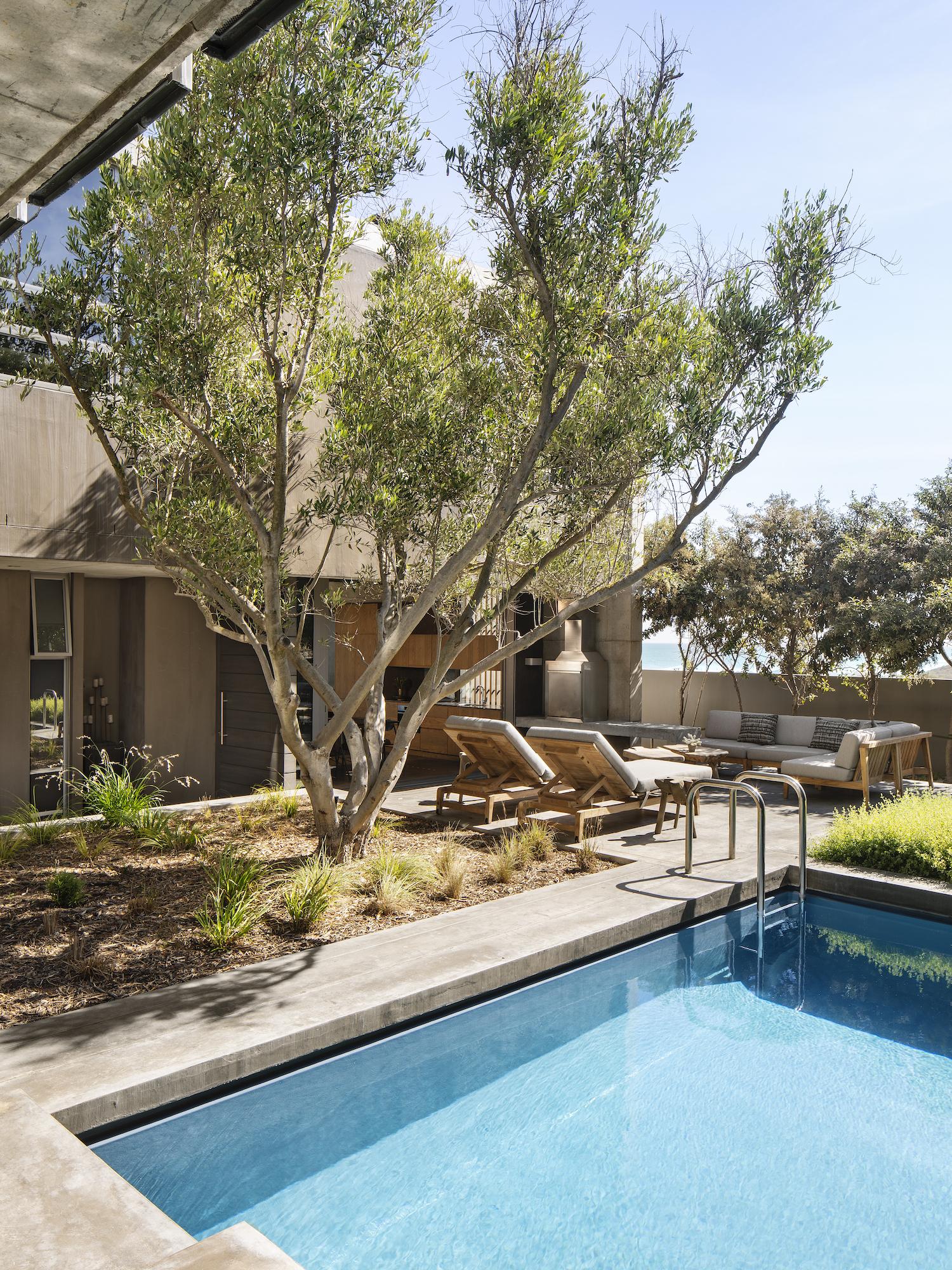 est living gavin maddock olive tree villa 2