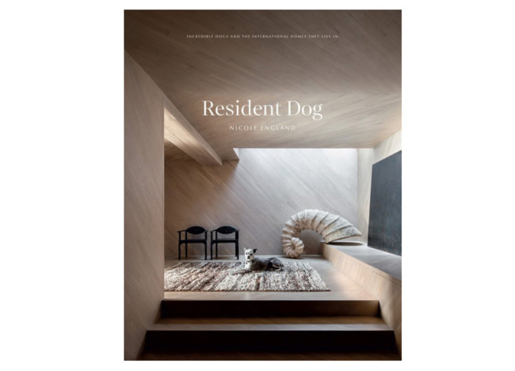 est living resident dog volume 2 incredible dogs international homes they live in 750x540