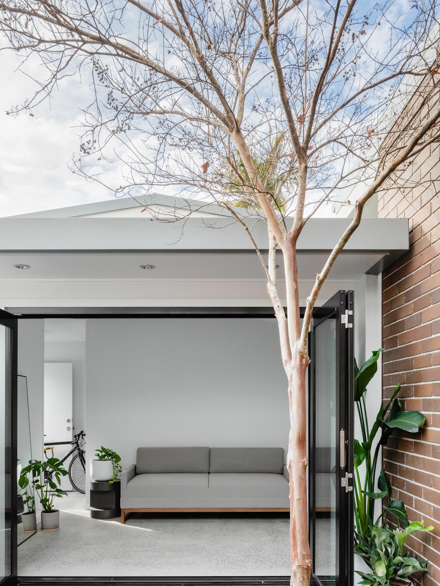 est living compact kitchens paddo terrace sandbox studio 1