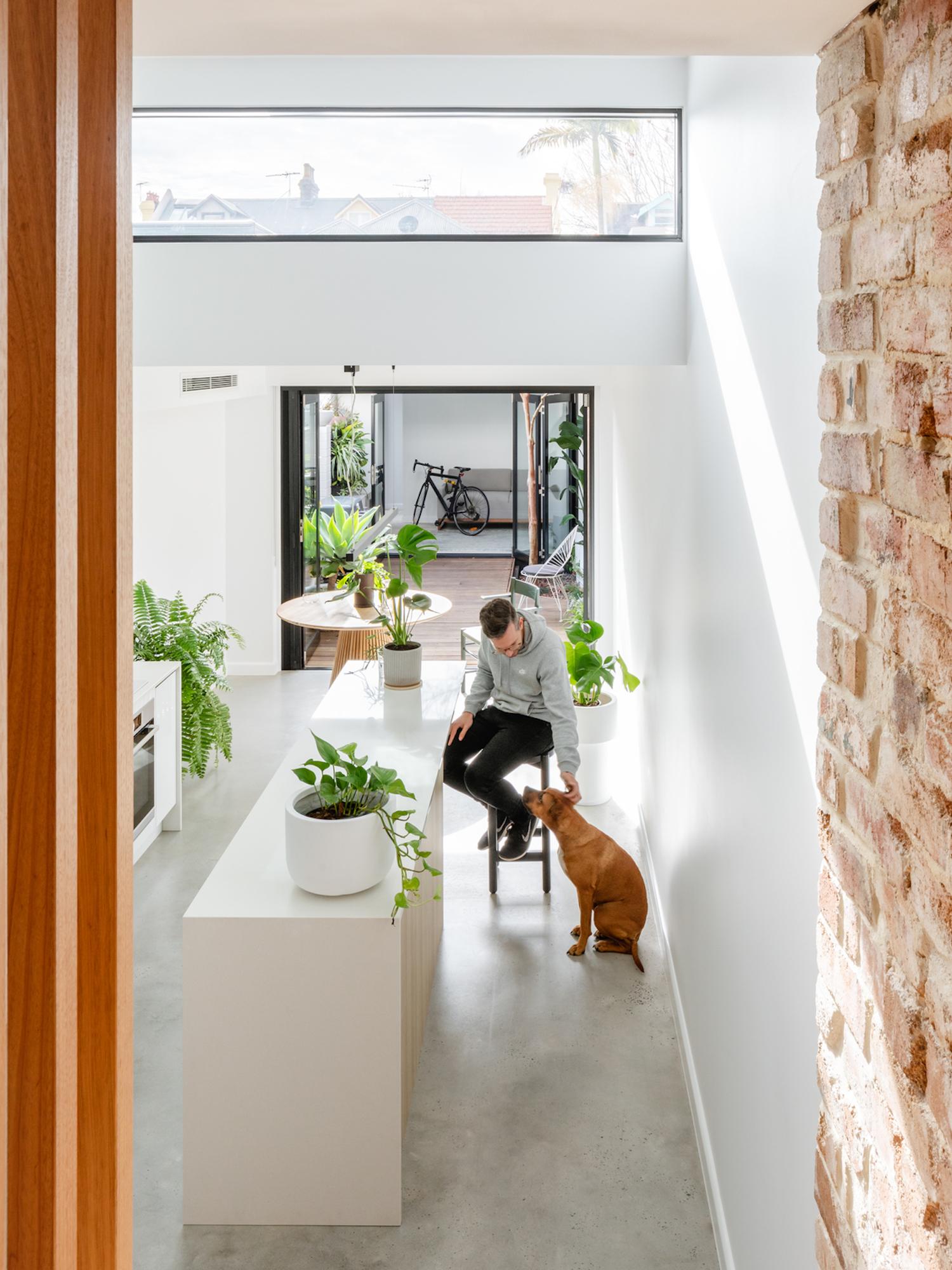 est living compact kitchens paddo terrace sandbox studio 2