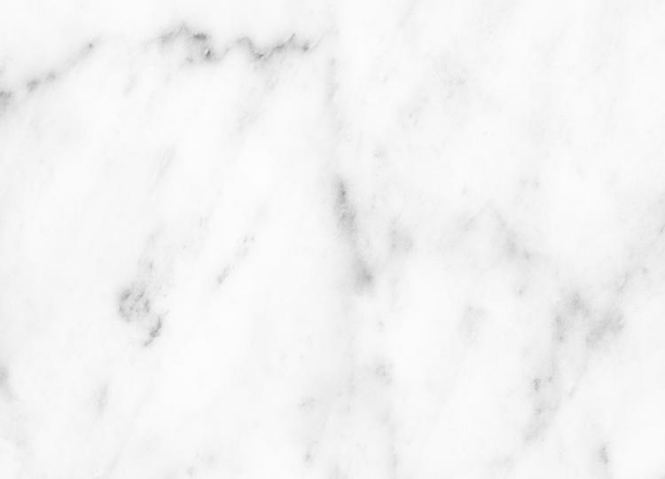 Earp Bros Bianco Carrara Honed