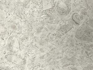 Pietra Stone Gallery Fossil Grey