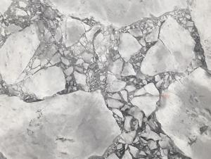 Pietra Stone Gallery Super White Marble