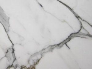 Surface Gallery Calacatta Grigio