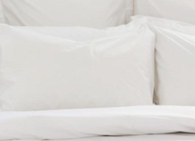 Bemboka Percale Cotton Pillow Case