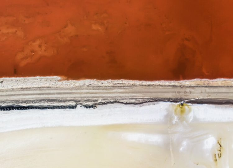 Javier Saiz Salt Lake 2 Collection