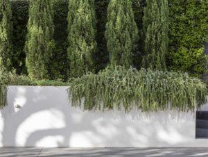 Joanne Green Landscape and Interior