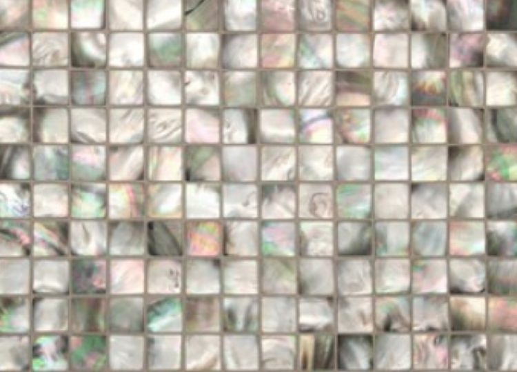 Surface Gallery Mother of Pearl – Black Pearl Square